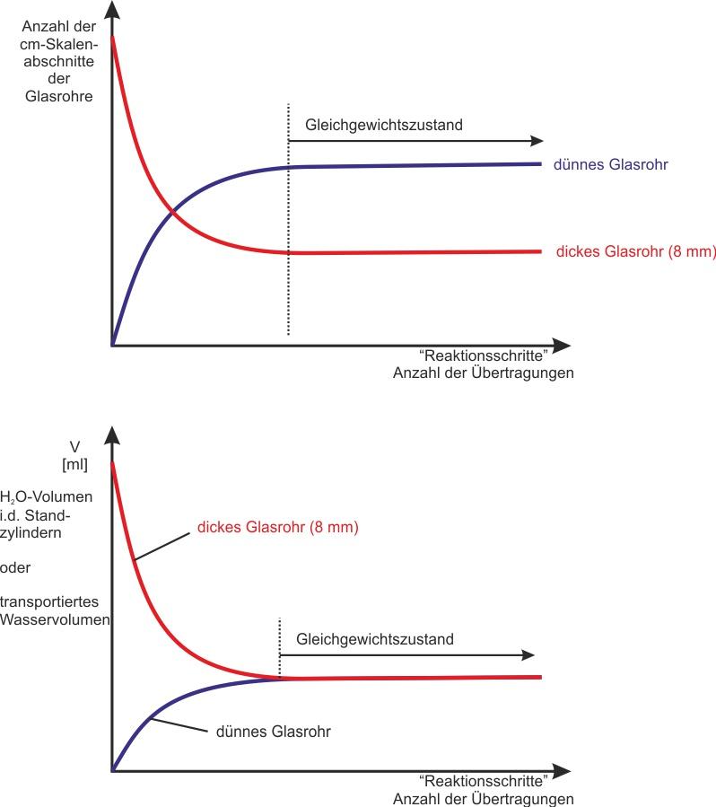 2.3 Modellexperiment - Stechheberversuch