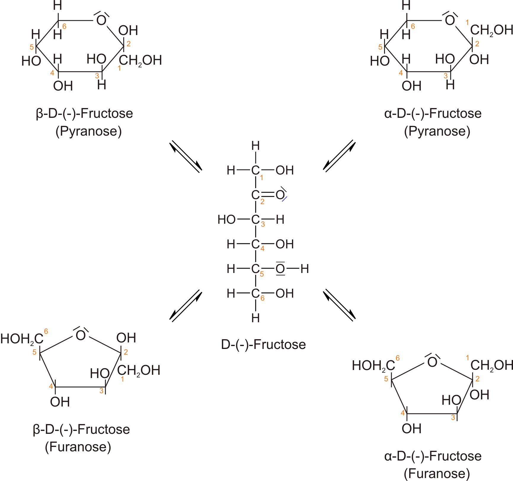 D Fructose Fischer Organische Chemie