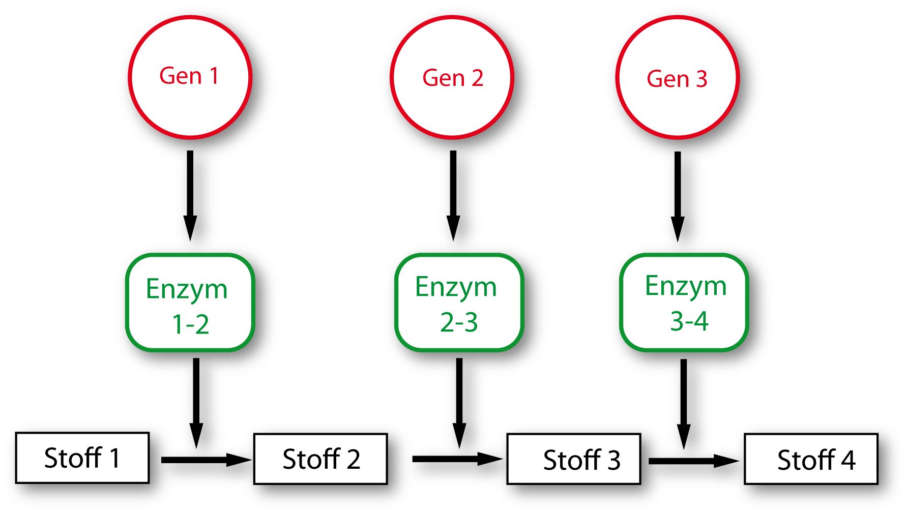 6 Nucleinsäure